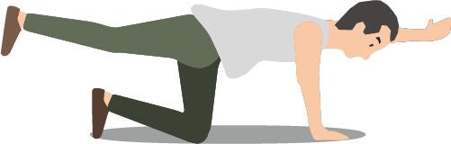 ぎっくり腰になりそう…。ぎっくり腰予防のために鍛えておきたい腰回りの筋肉4つとおすすめのエクササイズ。